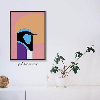 Superb Fairy Wren – native Australian bird