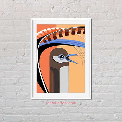 Superb Lyrebird – native Australian bird art