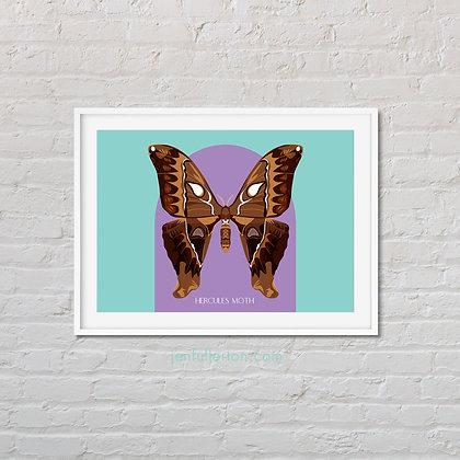 Hercules moth art print
