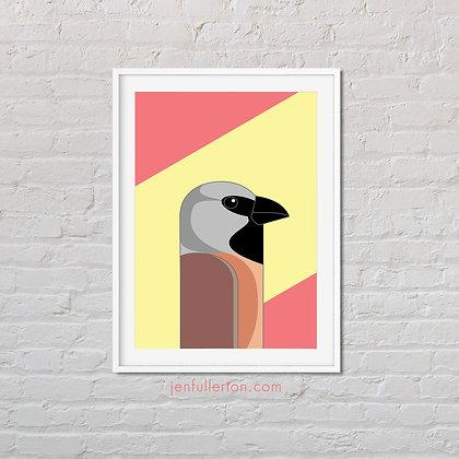 Black-throated finch print – native Australian bird art