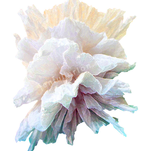 Pastel puffs