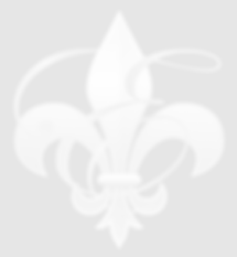 Fluer-de-lis Wix Site Opacity 10 percent