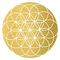 gold-flower-of-life no border.png