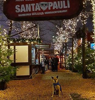 Maggi_&_Müsli_Santa_Pauli_Hamburg.JPG
