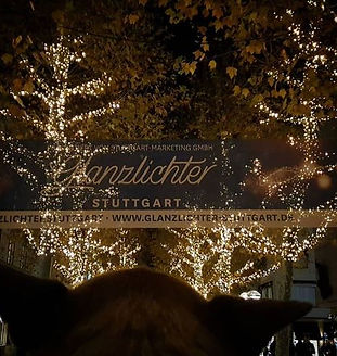 Maggi_&_Müsli_Weihnachtsmarkt_Stuttgart.