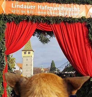 Maggi_&_Müsli_Weihnachtsmarkt_Lindau.JPG