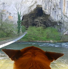 Peștera Unguru Mare.JPG