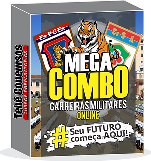MEGA COMBO.png