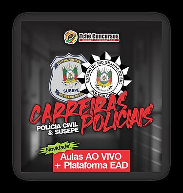 CAIXA CURSO.png