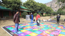 Giant Snakes and Ladder