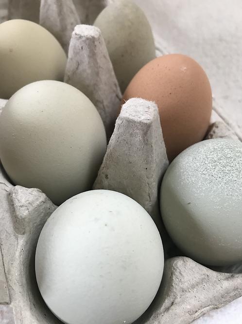 Good Egg Farm Eggs