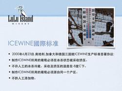 ICEWINE國際标准