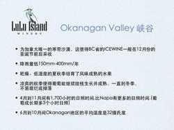 Okanagan Valley 峡谷