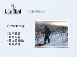 ICEWINE