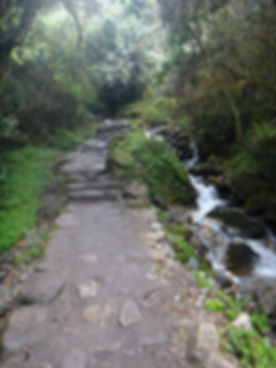 Kenneth Kiwicz looks ahead at Inca Trail