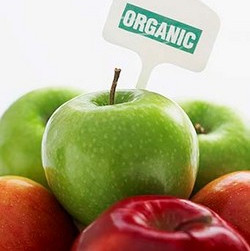 Mercado de alimentos e bebidas orgânicos atingirá US$ 320 bilhões até 2025