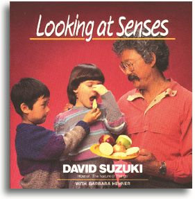 Looking at Senses