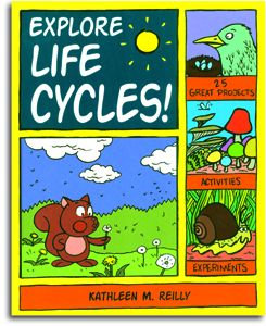 Explore Life Cycles