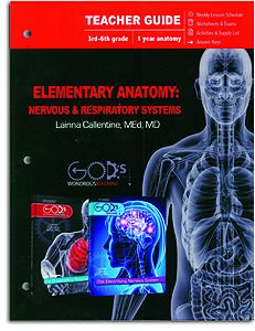 Elementary Anatomy Teacher Guide: Nervous & Respiratory Systems