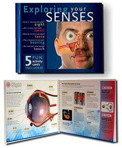 Exploring Your Senses