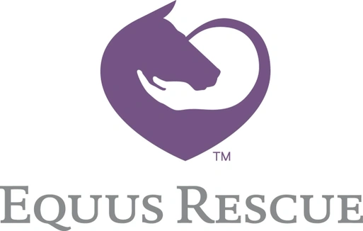 Equus Rescue Youth Camp and More