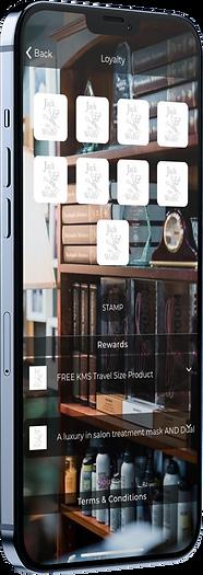 mockup-of-an-iphone-12-pro-max-5012-el1.png