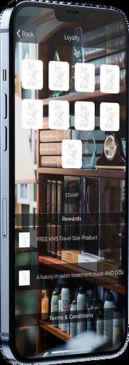 mockup-of-an-iphone-12-pro-max-5012-el2.png