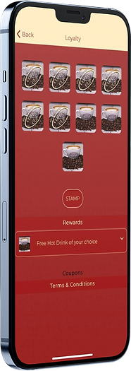 mockup-of-an-iphone-12-pro-max.png