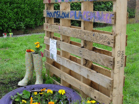 Small, Sustainable Projects You Can Do in Your Community