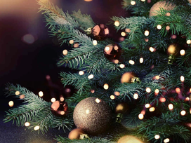 Tips to Having a More Sustainable Holiday Season