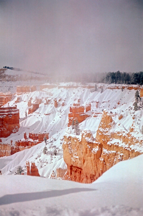 Bryce Canyon Under Snow III