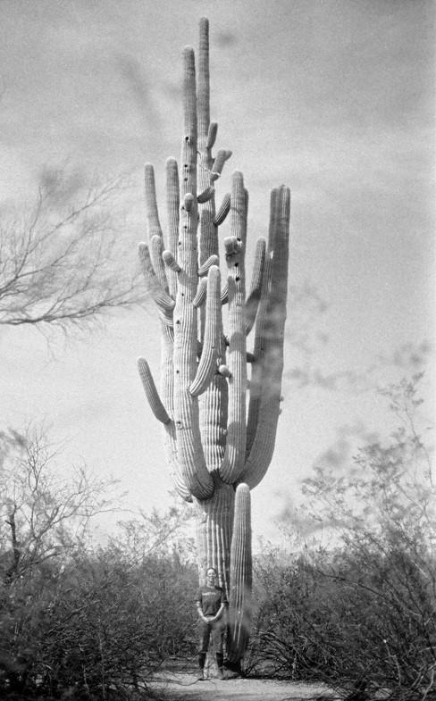 Elizabeth and Saguaro