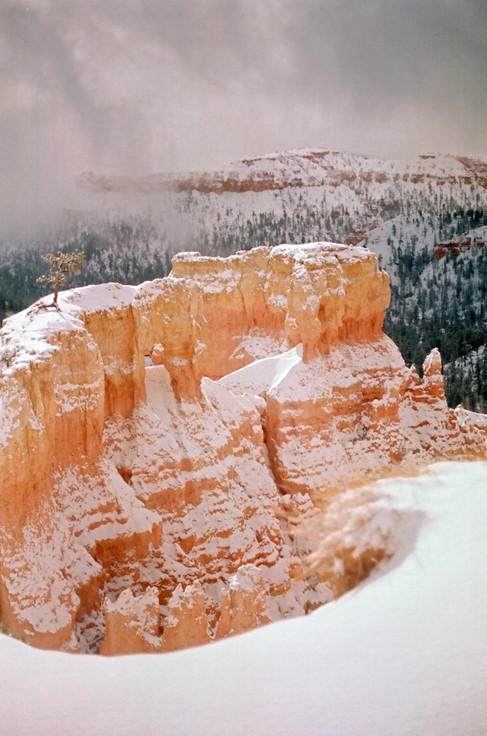 Bryce Canyon Under Snow II