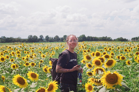 Elizabeth in the Sunflowers