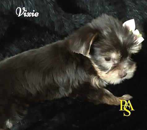 Vixie