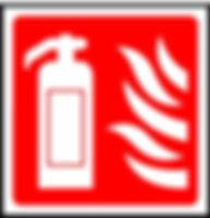DUDDON FIRE New logo square.jpg
