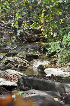 8 Mile Creek