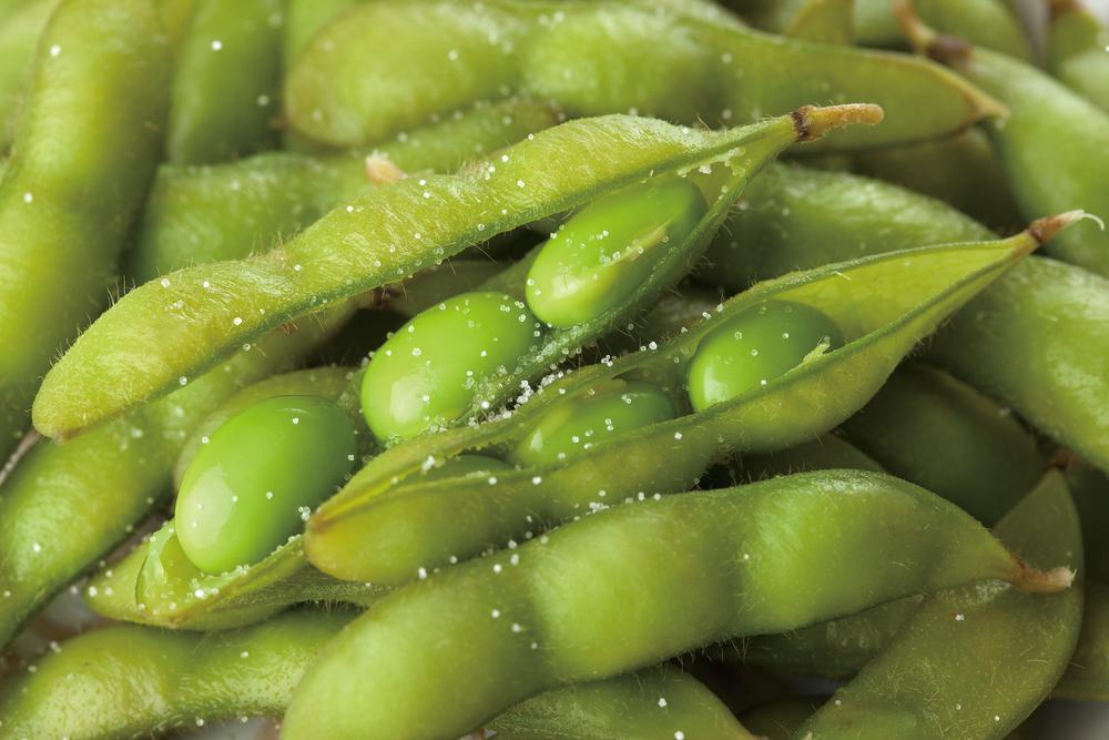 里山の野菜が一番美味しくなる、夏野菜の季節です。