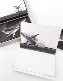 WHALE BOXED NOTES
