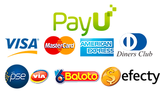 kisspng-payu-colombia-payment-logo-betaa