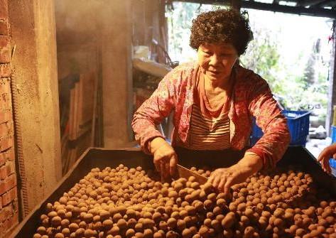 【一場來自鄉村的環境飲食革命-直接跟農夫買股份有限公司】