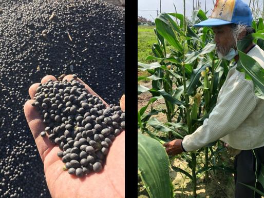 【「青銀共農」解決台灣老農危機創造多贏-幸福良食有限公司】