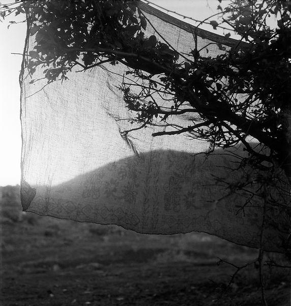 FILTER / FİLTRE,Anatolia, Turkey 1955