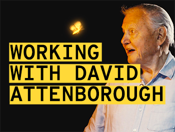 Our work with David Attenborough