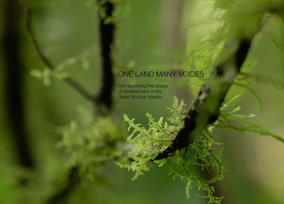One Land Many Voices