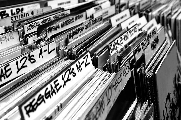 vinyl record sections