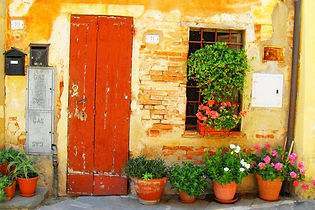 rustic door in italy potted plants
