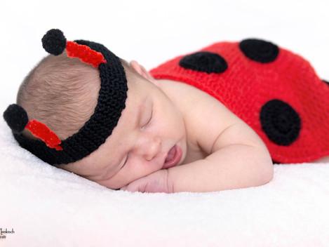 Neugeborenen Fotoshooting Frankfurt