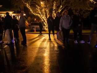 ESTABLISHMENT TREE LIGHTING