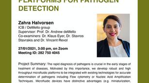 PhD public presentation by Zahra Halvorsen